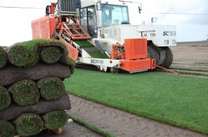 Sod Harvest in Action!