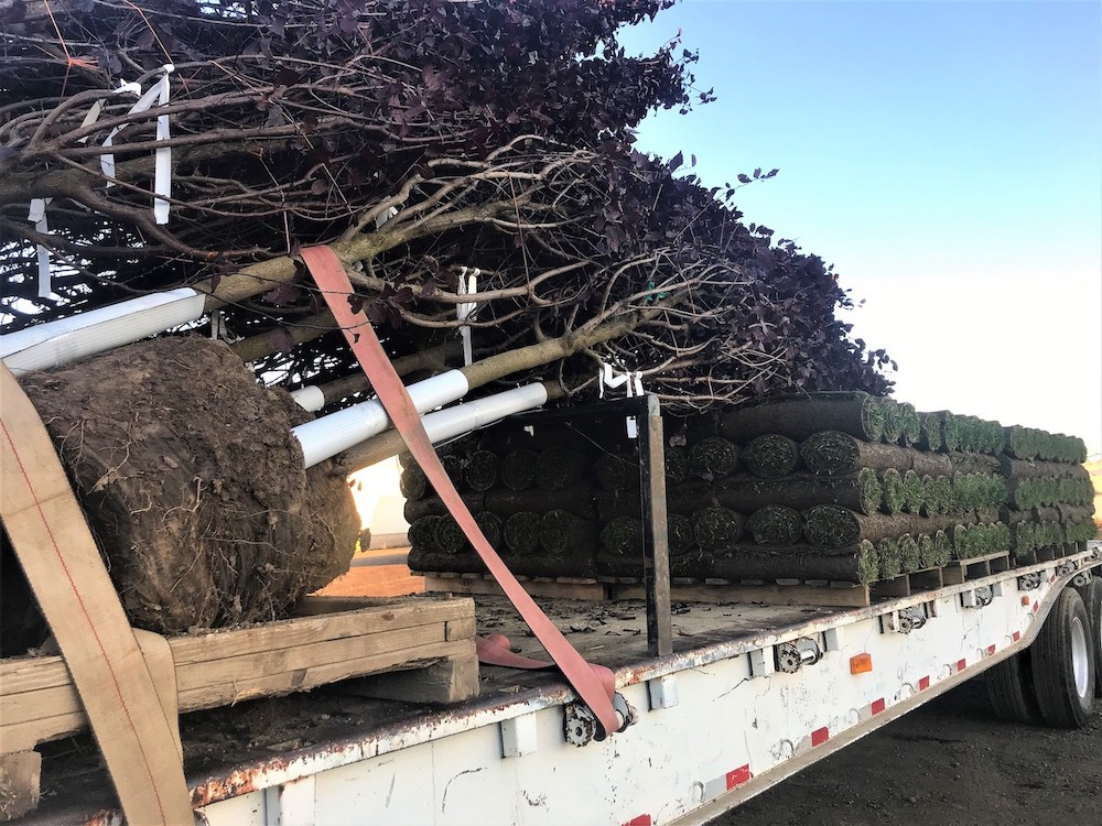 You can Order Sod Online like the sod on this truck